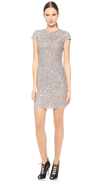Reem Acra Embroidered Cap Sleeve Dress