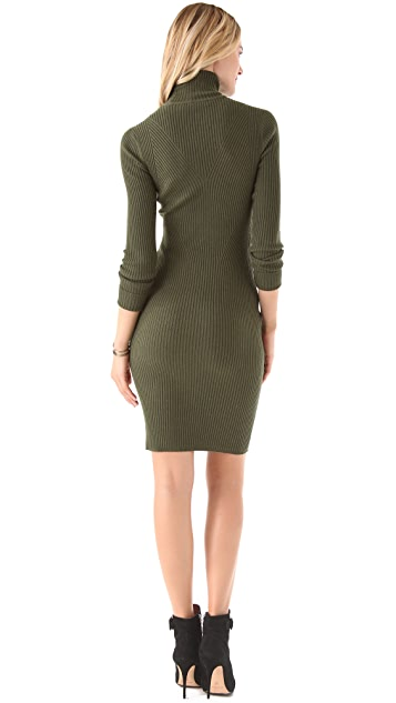 Rachel Roy Turtleneck Knit Dress