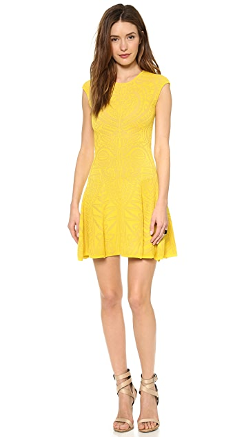 RVN Lace Jacquard Flare Dress