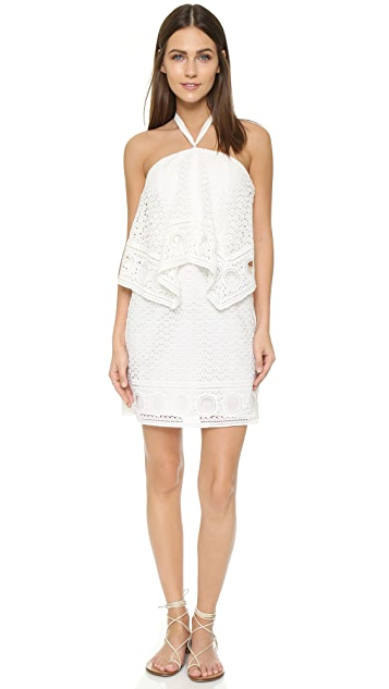 Saylor Kayla Halter Dress