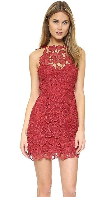 d26657e87f Saylor Jessa Dress ...