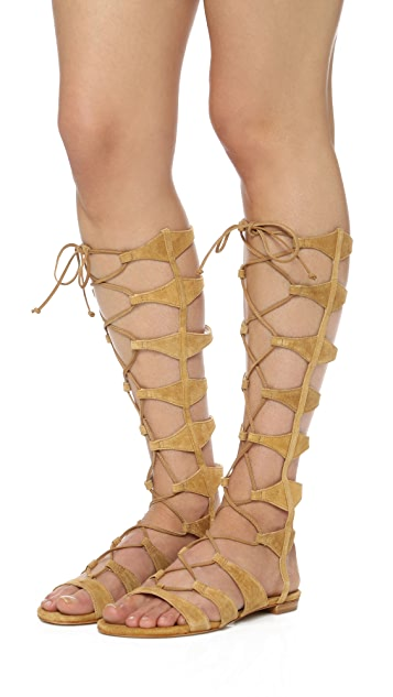 Schutz Violetta Tall Gladiator Sandals