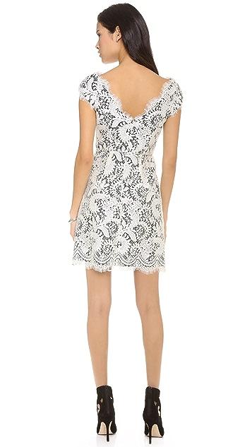 Shoshanna Cecile Lace Dress