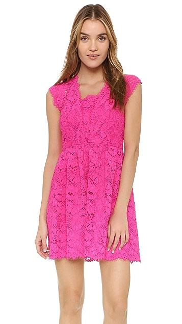 Shoshanna Vani Lace Dress