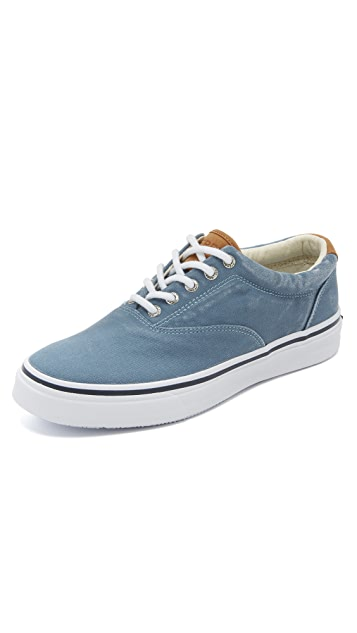 Sperry Striper LL CVO Sneakers