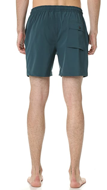 Theory Cosmos Clymer Trunks