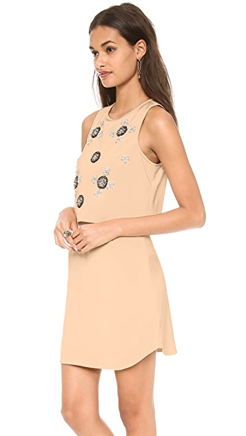 Tibi Cluster Beading A Line Dress