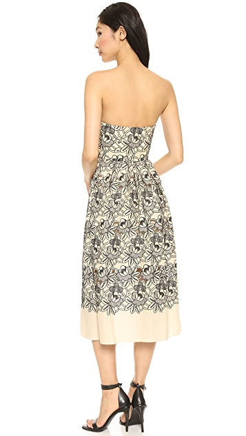 Tibi Strapless Dress