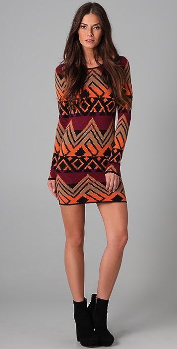 Torn by Ronny Kobo Zoe Sweater Dress