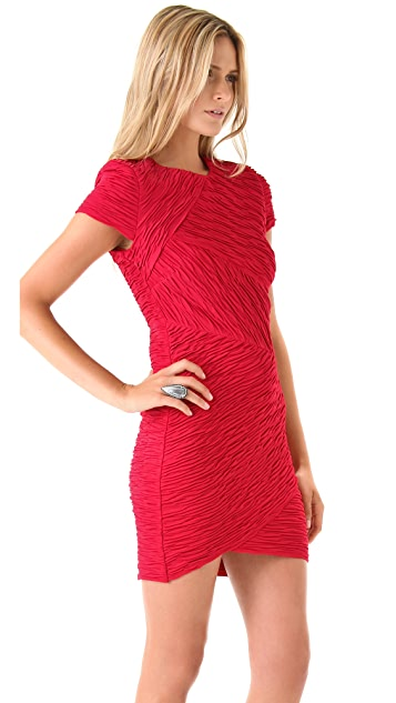 Torn by Ronny Kobo Kaitlyn Pleated Dress