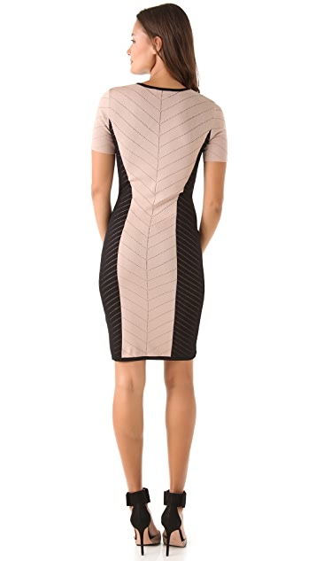 Torn by Ronny Kobo Caterina Dress