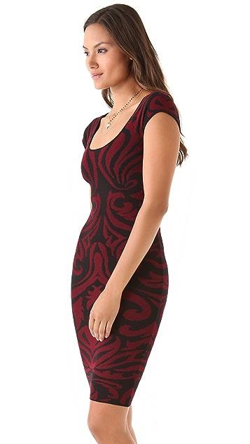 Torn by Ronny Kobo Stella Baroque Dress