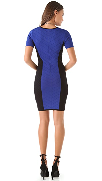 Torn by Ronny Kobo Caterina Combo Dress