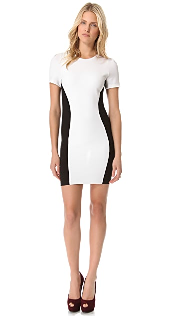 Torn by Ronny Kobo Shiran Short Dress