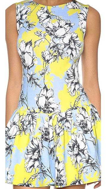 Torn by Ronny Kobo Brady Floral Dress