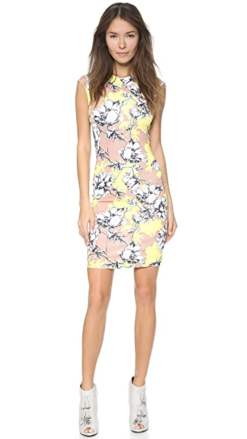 Torn by Ronny Kobo Morgan Floral Dress