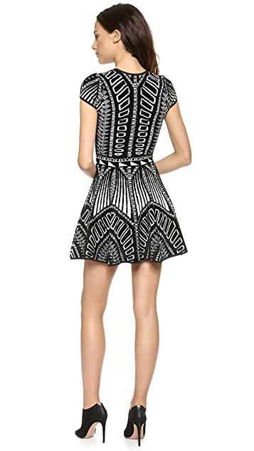 Torn by Ronny Kobo Vivienne Jacquard Dress