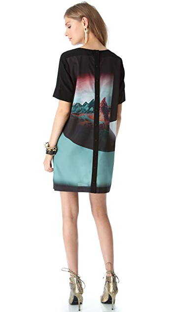 Twelfth St. by Cynthia Vincent Button Back Shift Dress