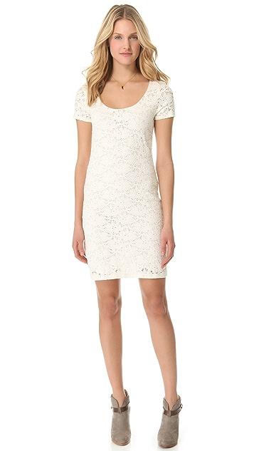 Velvet Delite Dress
