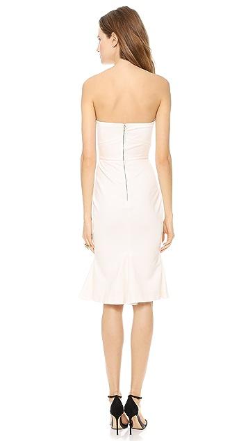 Zac Posen Strapless Jersey Dress