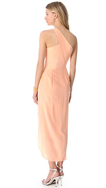 Zimmermann One Shoulder Maxi Dress