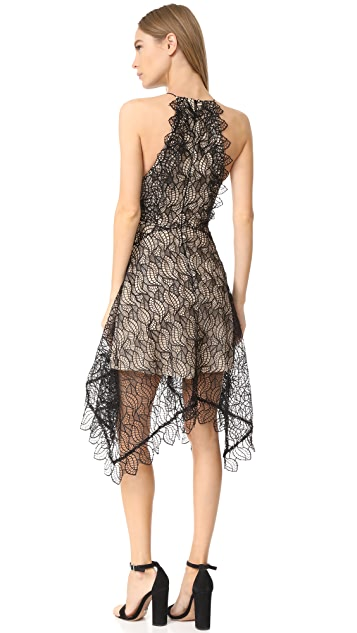 Acler Burton Lace Dress