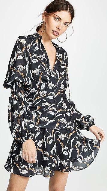 Acler Zammit Dress