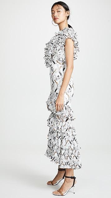Acler Плиссированное платье Leeds