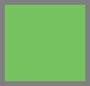 зеленый электрик