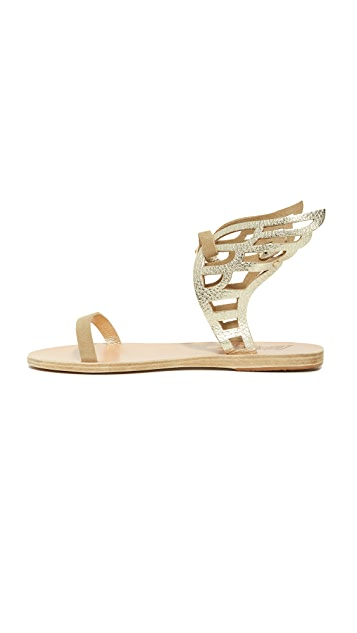 Ancient Greek Sandals Ikaria Lace Sandals