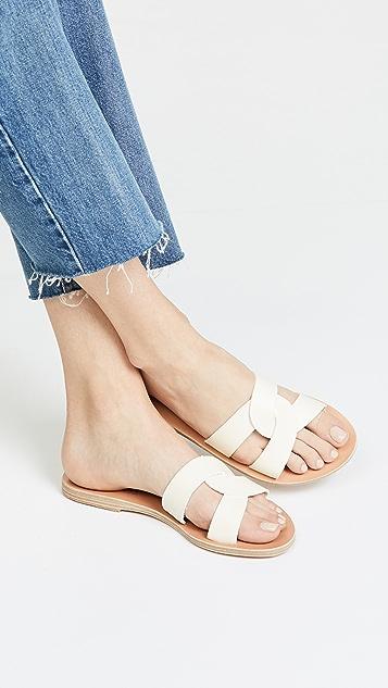 Ancient Greek Sandals Desmos Slide Sandals