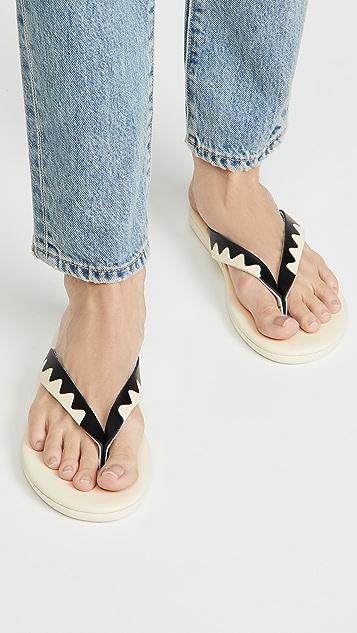 Ancient Greek Sandals Ammos 夹趾凉鞋
