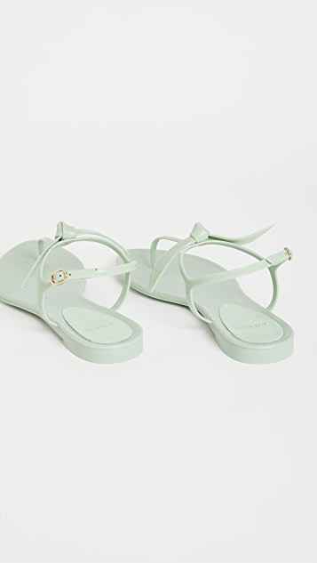 Alexandre Birman Clarita 果冻凉鞋