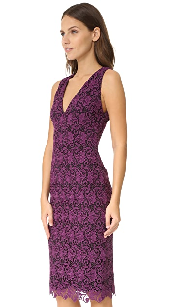 alice + olivia Preslee Fitted Lace Midi Dress