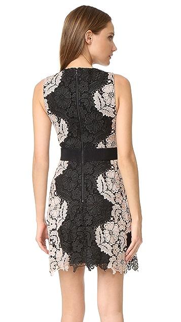 alice + olivia Patrice Aline Lace Dress