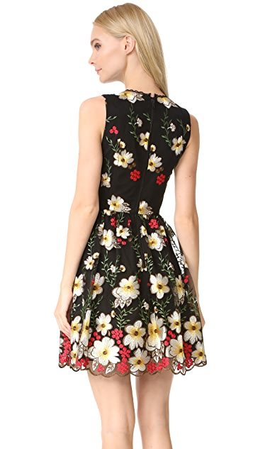 alice + olivia Becca Pouf Dress