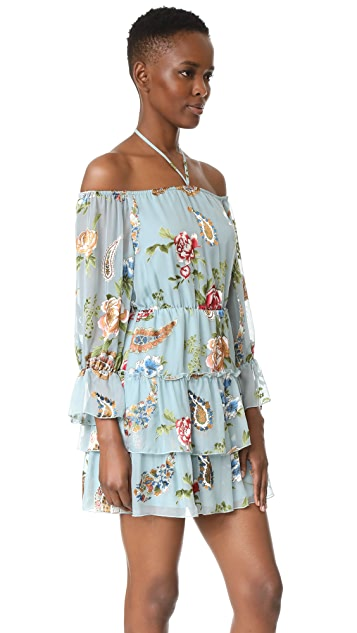 alice + olivia Waylon Blouson Sleeve Dress