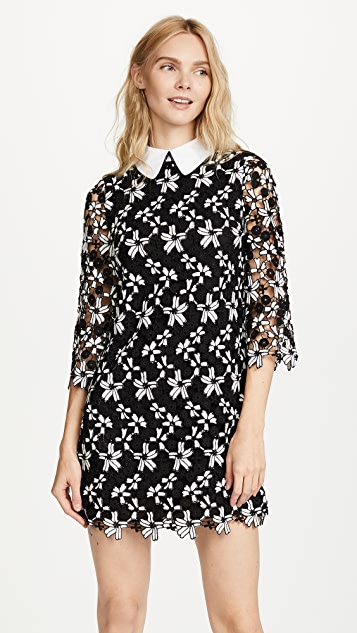 alice + olivia Debra Oversized Collar Dress