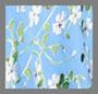 Spring Primrose/Cerulean