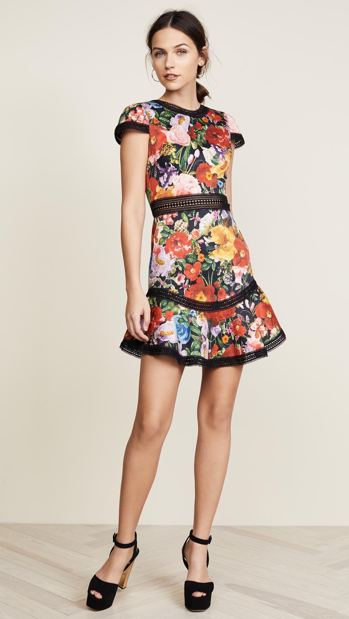 Alice Olivia Rapunzel Flutter Dress Kollette Most