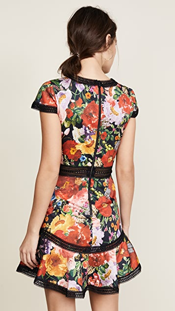 alice + olivia Rapunzel Flutter Dress