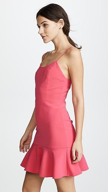 alice + olivia Andalasia Dress
