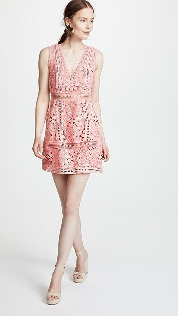alice + olivia Zula Party Dress