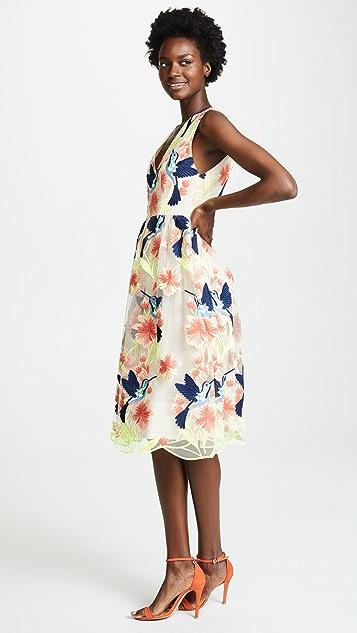 alice + olivia Becca Dress