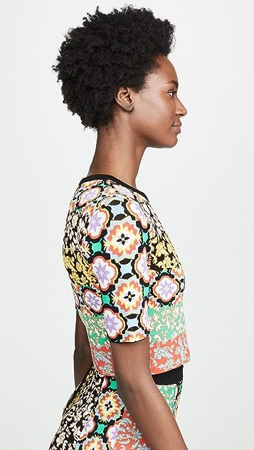 alice + olivia Ciara Crew Neck Short Sleeve Sweater
