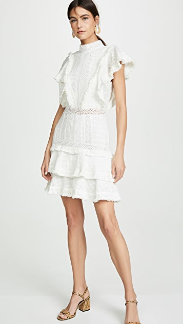 alice + olivia Bea Lace Insert Fringe Dress