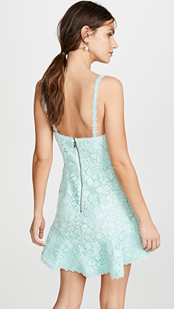 alice + olivia Rapunzel Plunging V Nk Dress