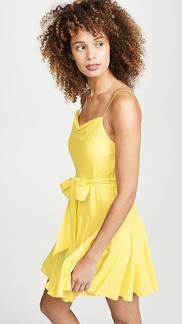 alice + olivia Webber Godet Dress