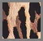 斑点豹纹深棕褐色
