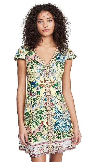alice + olivia Hadley 纽扣版型喇叭连衣裙